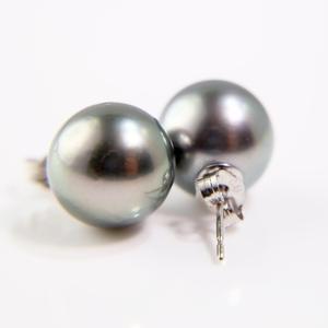 White Gold Tahitian Pearl Stud Earrings